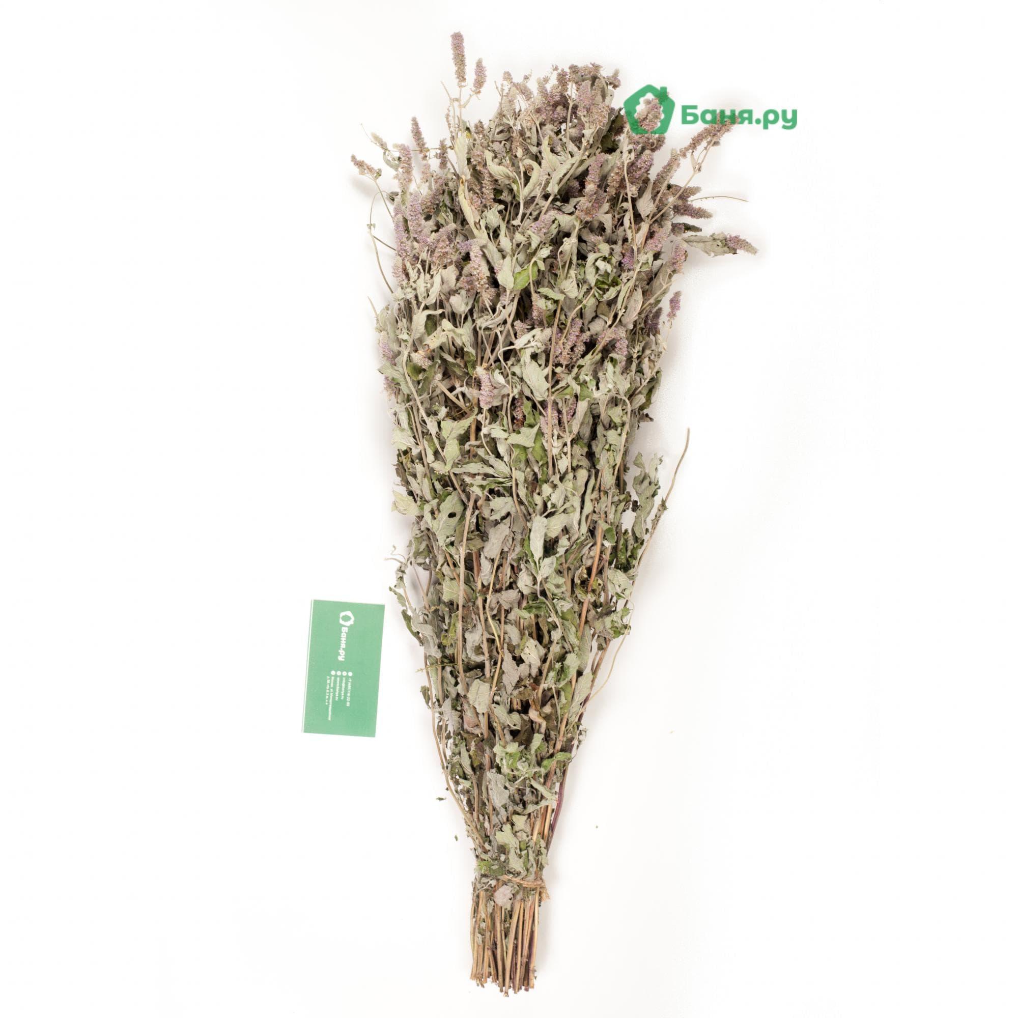 Мята садовая травяной веник